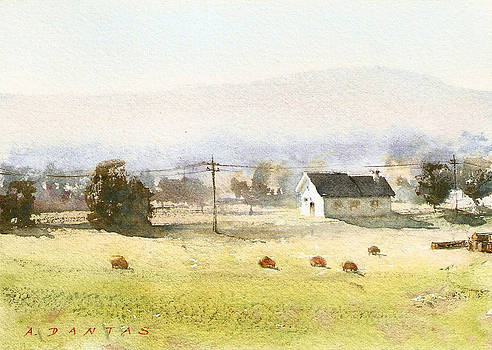 A Quiet Day by Alex Dantas