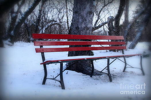 A red bench waiting for spring by Lisa Conner