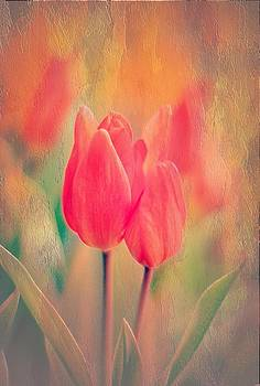 A Red Tulip Moment by Anne Macdonald