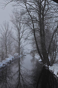 A river in March by BandC  Photography