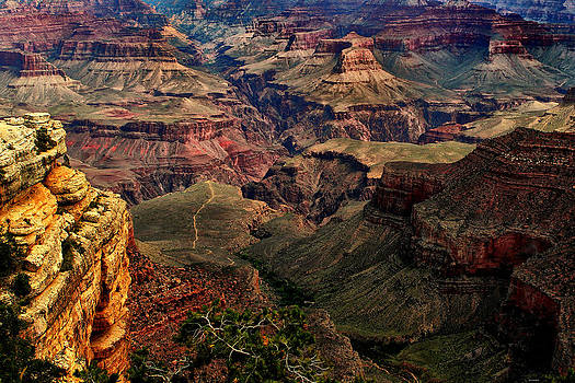 A River Runs Through It-The Grand Canyon by Tom Prendergast