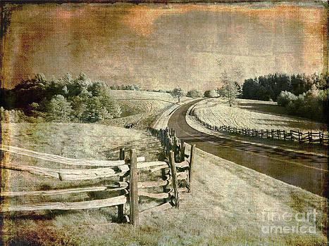 Dan Carmichael - A Road Well Traveled