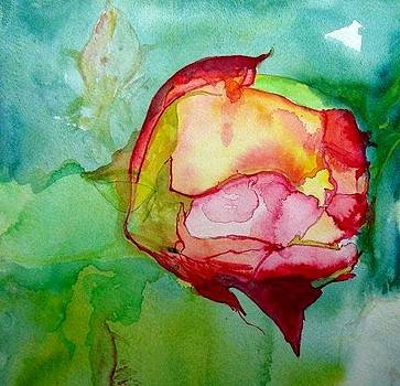 A Rose by Dawn Derringer