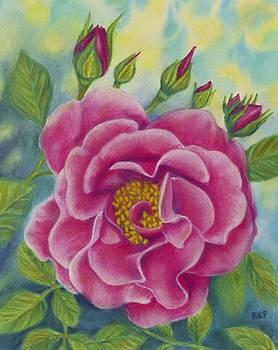 A Rose of Friendship by Rebecca Prough
