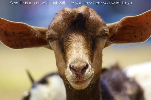 Jennifer Lamanca Kaufman - A smile is a passport that will take you anywhere you want to go