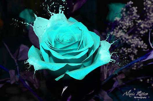 A Splash of Beauty  by Alexis Retter