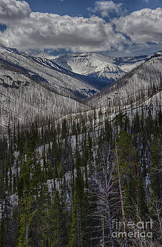 A Spring's Look to the Right on the Way Into Yellowstone by Steve Triplett