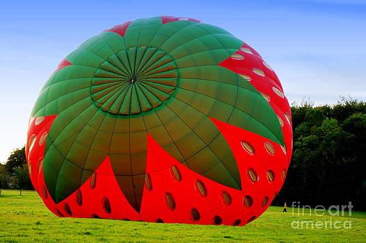 Joe Cashin - A Strawberry Balloon