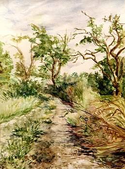 A summery walkaway by Elke Hensel
