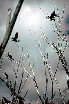 A Threatening Storm by Jon Lord