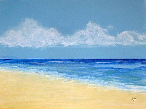 A Tranquil Beach by Nancy Nuce