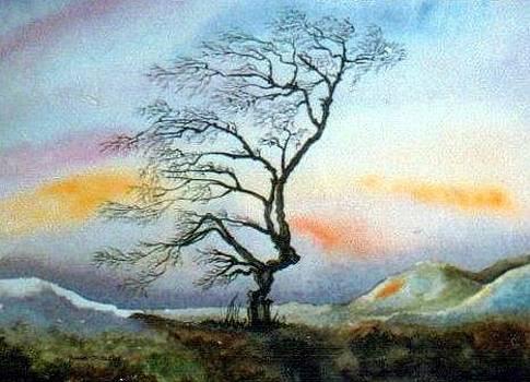 A tree in winter by Anne Dalton