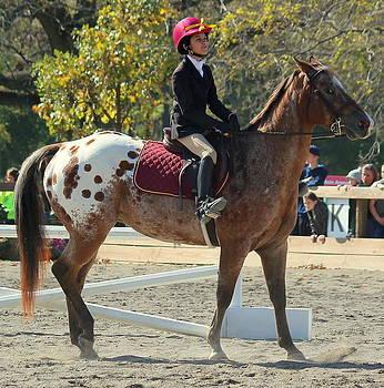 Rosanne Jordan - A True Equestrian