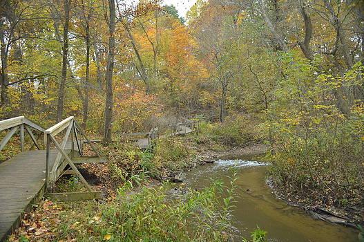 A walk next to the creek by Cim Paddock