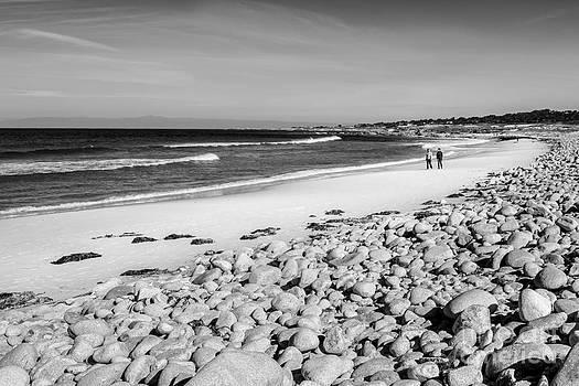 A Walk on the Beach by Daniel Ryan