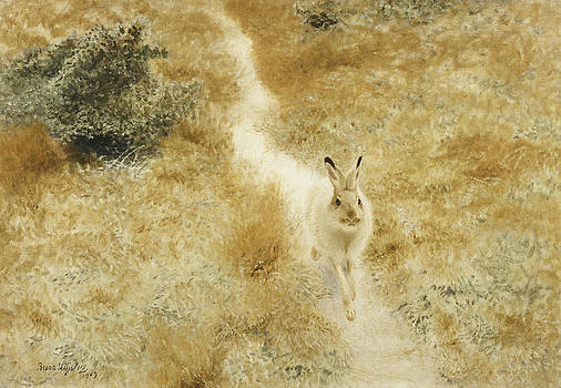 Bruno Andreas Liljefors - A Winter Hare in a Landscape