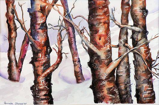 A Winter Hike by Pamela Shearer