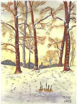 A winters Glow by John Williams