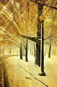 Marty Koch - A Winter