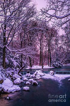Hannes Cmarits - a winter