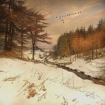A Winters Tale by Roy  McPeak