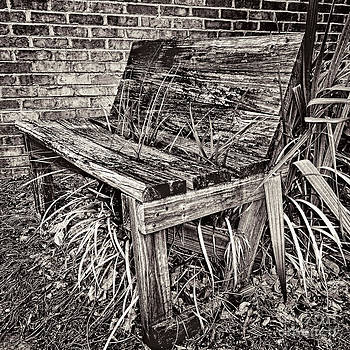 Dave Bosse - Abandoned and Neglected