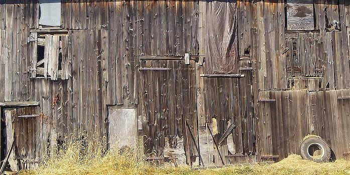 David Letts - Abandoned Barn
