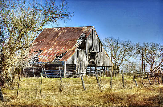 Abandoned Barn in Royse City by Lisa Moore