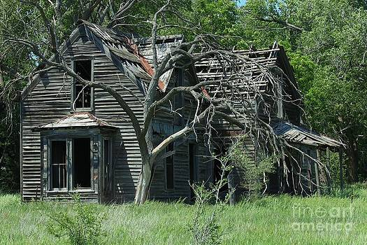 Abandoned Country Kansas Farm House by Robert D  Brozek