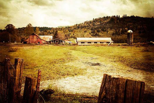 Abandoned Farm by Takeshi Okada