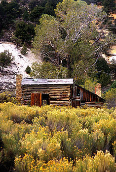 Abandoned Homestead by Martin Sullivan