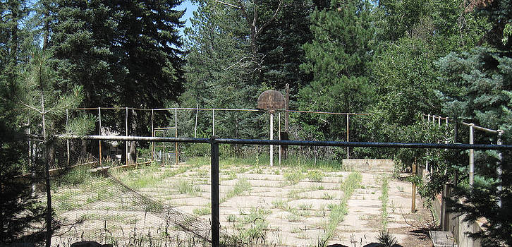 Abandoned Hoops by Tammy Sutherland