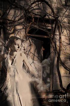 Fantasy- Abandoned House - Even The Last Ghost Left by Feryal Faye Berber
