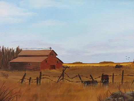 Abandoned Yard by Linda Koch