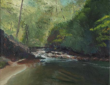 Above Bald River Falls by William Killen