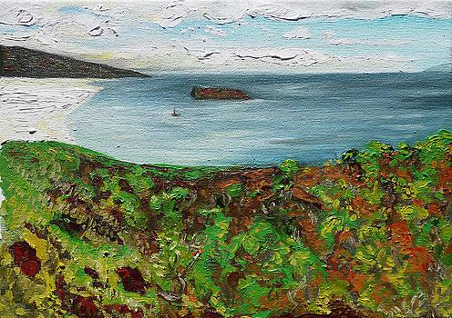 Above the Makena Beaches by Joseph Demaree