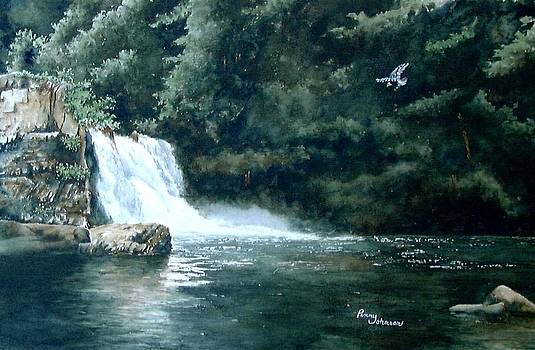 Abrams Falls by Penny Johnson