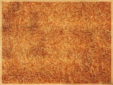 Abstract 1302 by Mark Preston