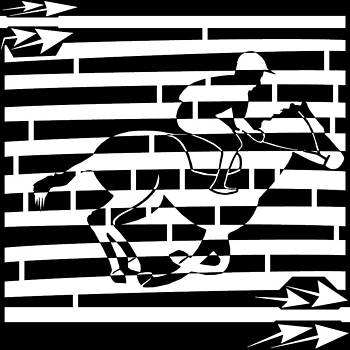 Abstract Distortion Boy On a Horse Maze  by Yonatan Frimer Maze Artist