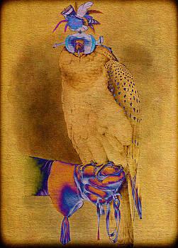 Pamela Phelps - Abstract Falconer and Falcon