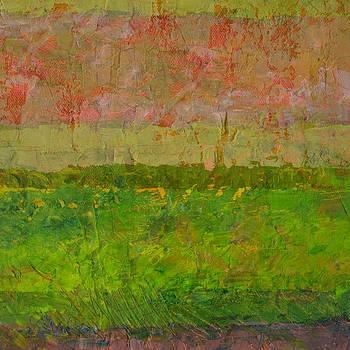 Michelle Calkins - Abstract Landscape Series - Summer Fields