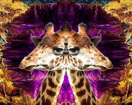 Abstract Mirrored Giraffe With Beautiful Eyes by Kim M Smith