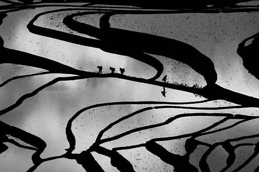 Abstract Pattern BW by Jason KS Leung