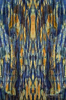 David Gordon - Abstract Symmetry I