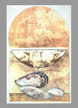 Abstract with Shells by Marte Thompson