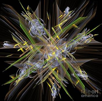 Abstrcat bouquet by Laxmikant Chaware