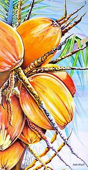 Abundance by Julie  Hoyle