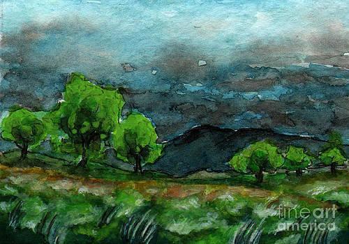 Ac063 Rainy Clouds Over Mountain by Kirohan Art