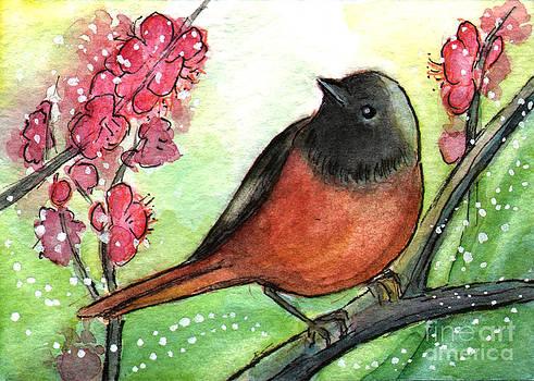 Ac314 Red Belly Bird by Kirohan Art