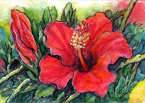 Ac332 Hibiscus Flower by Kirohan Art